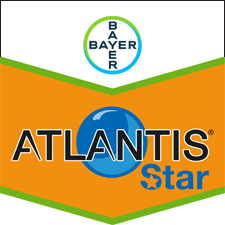 Atlantis Star