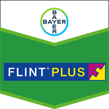 Flint Plus 64 WG