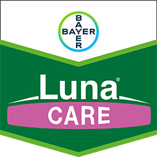 Luna Care 71,6 WG
