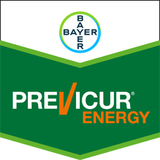 Previcur Energy 840 SL